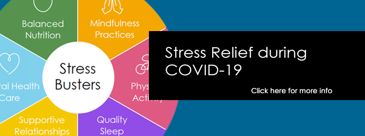 California Surgeon General's Playbook: Stress Relief during COVID-19